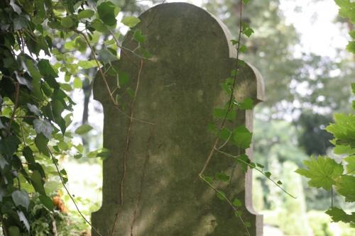 steingrab.jpg